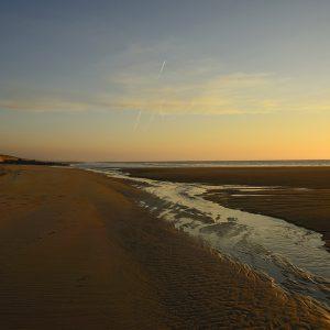 Découvrez les superbes plages landaises